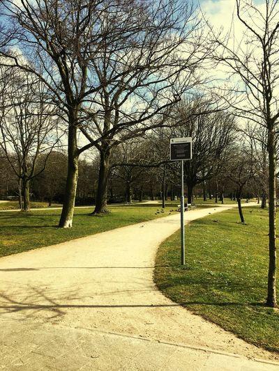 U1 Park Vlaardingen The Netherlands T'Hof En Oranjepark Check This Out Hello World Taking Photos Enjoying Life Sunny☀ Original Walking Around Green Pathway ruh yorgunluğuna iyi gelen yeşil parklar😉 groen doet mijn geest goed😌 green is good for my soul😊 IPhoneography Streetphotography