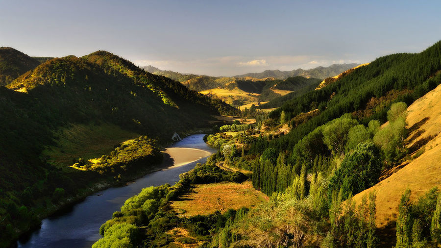 Wanganui River Road, New Zealand New Zealand Beauty New Zealand Scenery New Zealand Landscape River Road River View Beauty In Nature Day High Angle View Landscape Mountain Mountain Range Nature New Zealand New Zealand Natural No People Outdoors River Scenics Sky Sunset Tranquil Scene Tranquility Tree Wanganui Water The Great Outdoors - 2018 EyeEm Awards