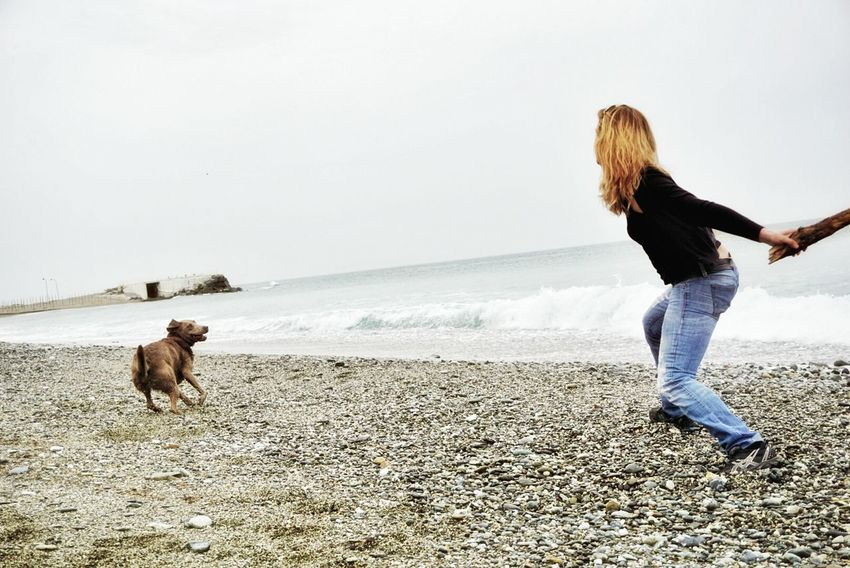 Hanging Out Check This Out Taking Photos Enjoying Life Playing Playing With My Dog Dogslife Dog Love Dogs Of EyeEm Doginmove SonyAlpha6000 Water Seaside Seascape Beachphotography Beach ThatsMe MemyselfandI The Great Outdoors - 2016 EyeEm Awards