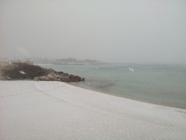 Beach Beauty In Nature Day Gabbiano Horizon Over Water Marina Di Pulsano Nature Neve Sul Mare No People Outdoors Puglia South Italy Sand Scenics Sea Sky Tranquility Water