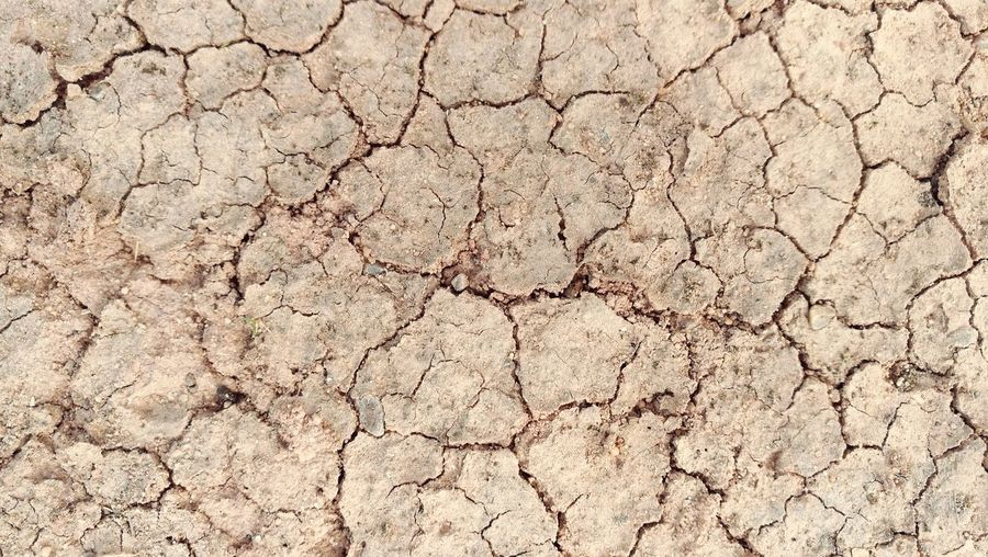 Textured  Backgrounds Cracked Pattern Abstract Close-up Nature Arid Climate
