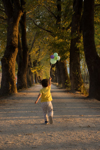 Myson Mysongrowup AhmetÖmerKaradağ EyeEm Best Shots EyeEm Gallery EyeEm Selects Running Freeroam Sunset Silhouettes Baloons EyeEm Nature Lover Bursa / Turkey Tree Full Length Road Leaf Forest Standing Child Holding Rear View Autumn
