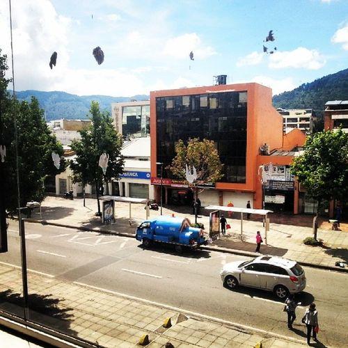 Vista desde la oficina. View Office PMO Bogotá Colombia
