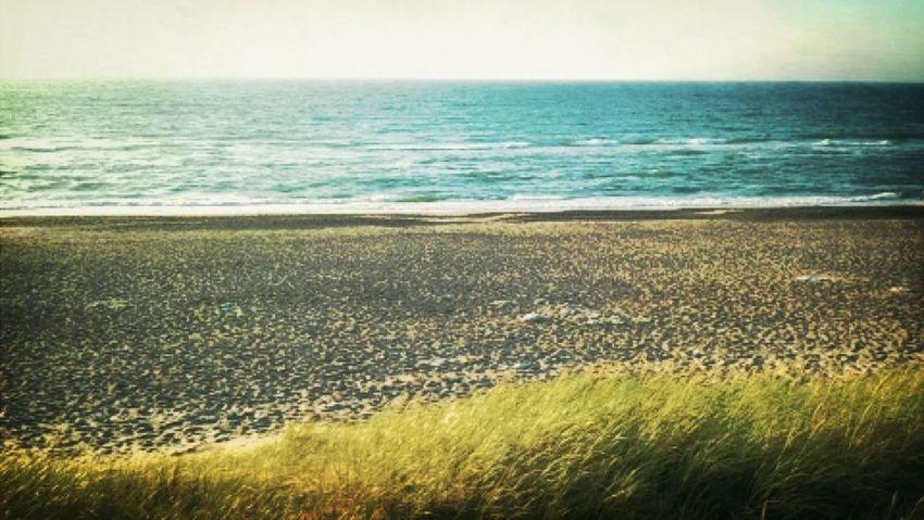Vesterhavet ❤ Nature