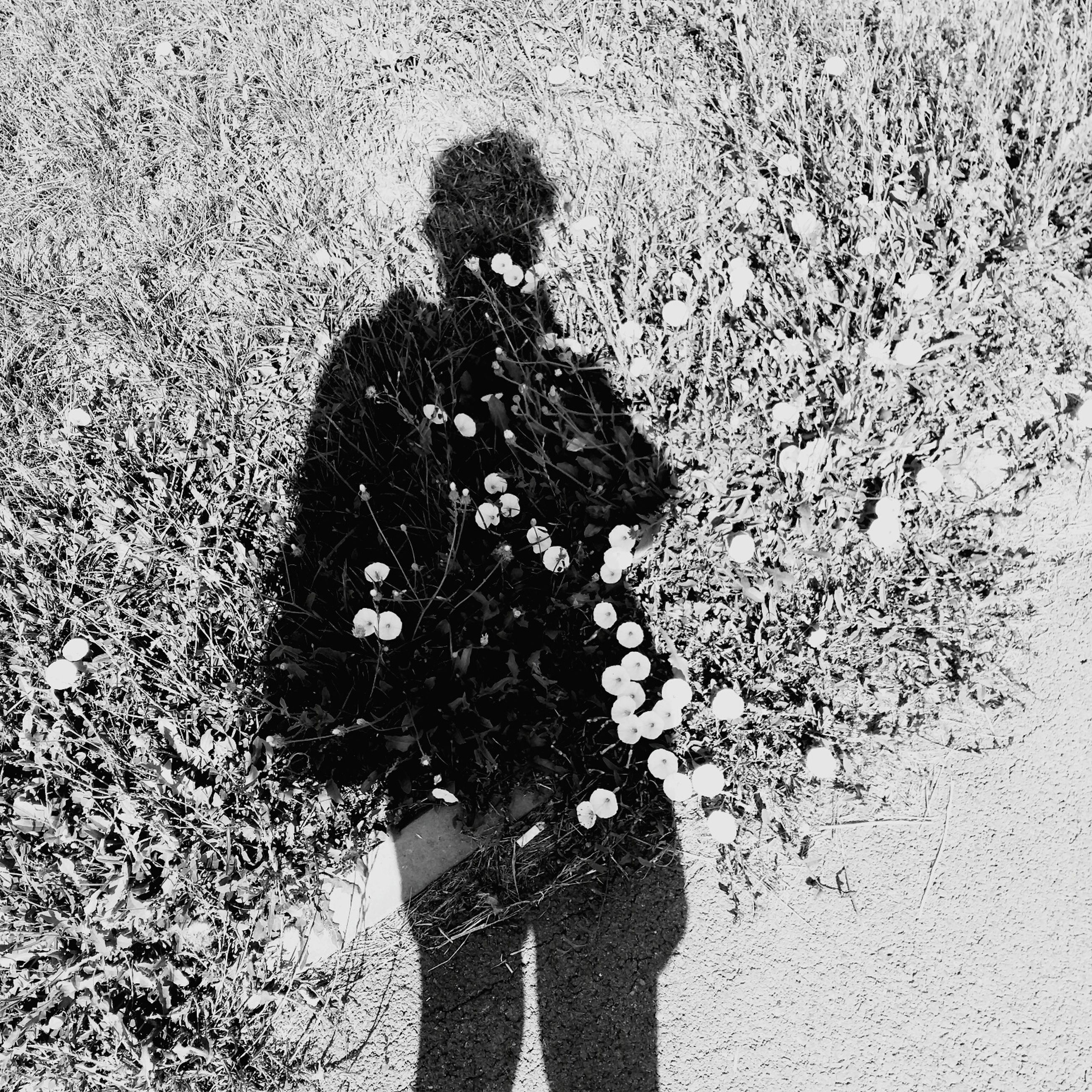 shadow, standing, high angle view, sunny, leisure activity, gesturing, holding, outdoors, footpath, day, carrying, person, focus on shadow