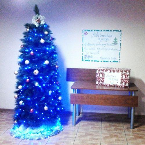 KauKo bendrabutis Nr. 1 jau laukia kalėdų ! Kaunokolegija Christmas2013