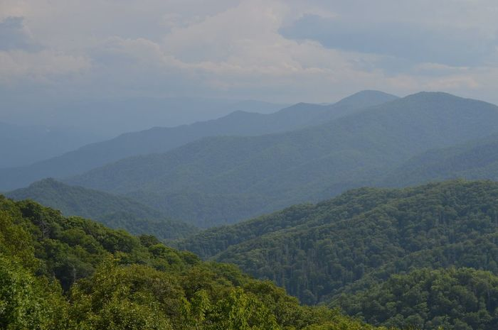 Tennessee Mountain Trees And Sky Nature Photography Gatlinburg Tennessee Forrest Mountains Great Smoky Mountains  Landscape Deapth Of Field Roadtrip