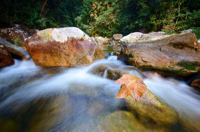 Natural waterfall at Gunung Stong state park, Kelantan malaysia. Wallpaper Background Malaysia ASIA Water Waterfall Tree Motion Long Exposure Rock - Object Sky Flowing Water Flowing Power In Nature