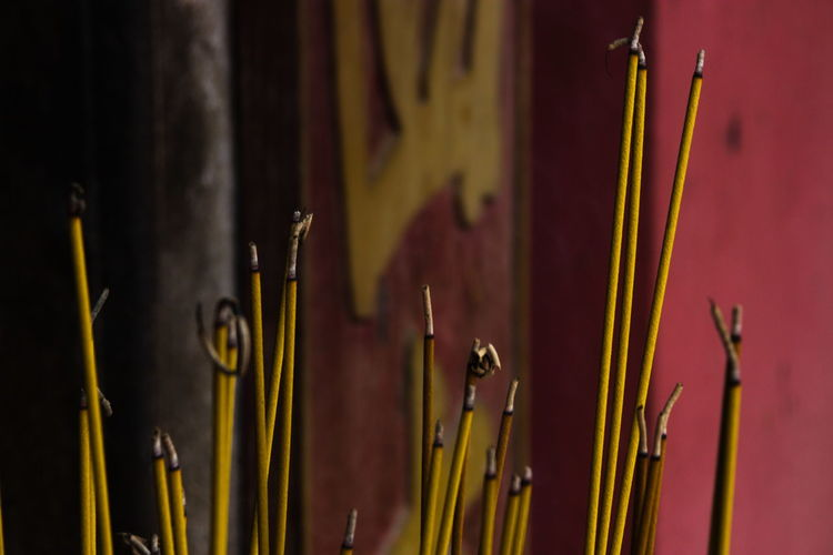 Incense No People Indoors  Close-up Religion Belief Spirituality Focus On Foreground Selective Focus Built Structure Large Group Of Objects Place Of Worship Architecture Burning Stick - Plant Part Still Life Wood - Material Yellow Nature