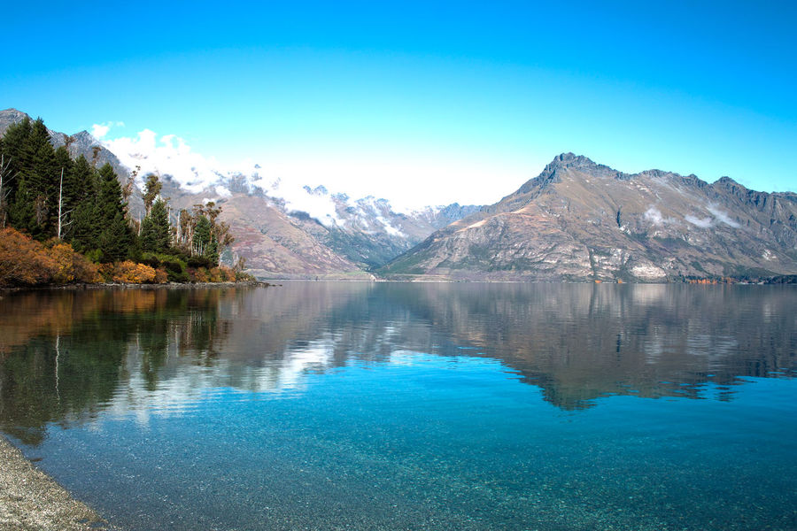 New Zealand Traveling Landscape Long Clouds Nature Photography Lsndscape Reflection Photography Mountain_collection Queenstown Newzealand Lakefront Autumn Forrest Nature