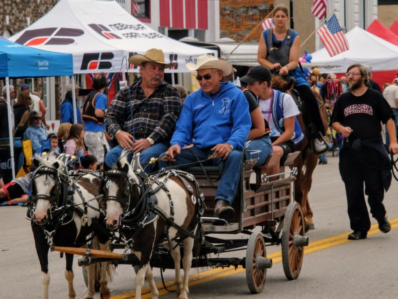 56th Annual National Czech Festival - Saturday August 5, 2017 Wilber, Nebraska Camera Work Cowboys EventPhotography Nebraska Photo Essay Small Town America Storytelling Visual Journal Wilber, Nebraska Adult Adults Only Animal Themes Culture And Tradition Czech Days Czech Festival Day Farmer's Life Fujifilm_xseries Full Length Horse-drawn Mammal Mature Adult Miniature Horses Outdoors Parade People Photo Diary Real People Sitting Small Town Life Transportation