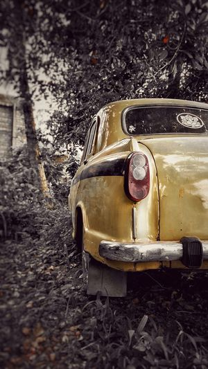Car Transportation Abandoned Land Vehicle Outdoors Old-fashioned No People Day Close-up Photography Photo Of The Day Wallpaper 4K HDR IPhone Vintage Blackandwhite Old Car India Taxi Cab Kolkata Photo Graphy Photo Yellow Lieblingsteil Miles Away EyeEmNewHere The City Light Live For The Story Paint The Town Yellow