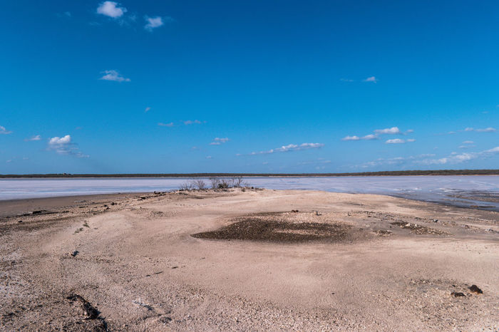 """La Sal del Rey, or """"the King's Salt,"""" is one of three naturally occurring salt lakes in South Texas. Sitting atop an estimated four million tons of salt, these hypersaline lakes are seven times saltier than the ocean. One reason why its protected is because its a roosting stop for a lot of migranting birds especially the endangered long-billed curlew. EyeEm Nature Lover EyeEm Selects Landscape_Collection Nature Nature Photography Preserved Rio Grande Valley Sal Del Rey Salt Save The Nature Texas Adventure Beauty In Nature Blue Sky Land Landscape Nature On The Road Protection Salt - Mineral Salt Lake Scenics - Nature State Park  Tranquil Scene Tranquility"""