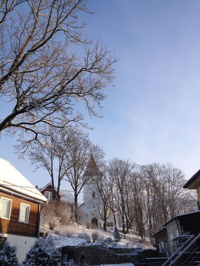 Clear Sky Cold Temperature House Nature Outdoors Sky Tree Winter