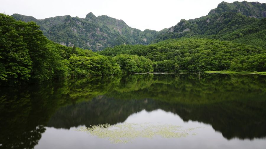 Scenic View Of Lake With Reflection Of Trees By Mountain