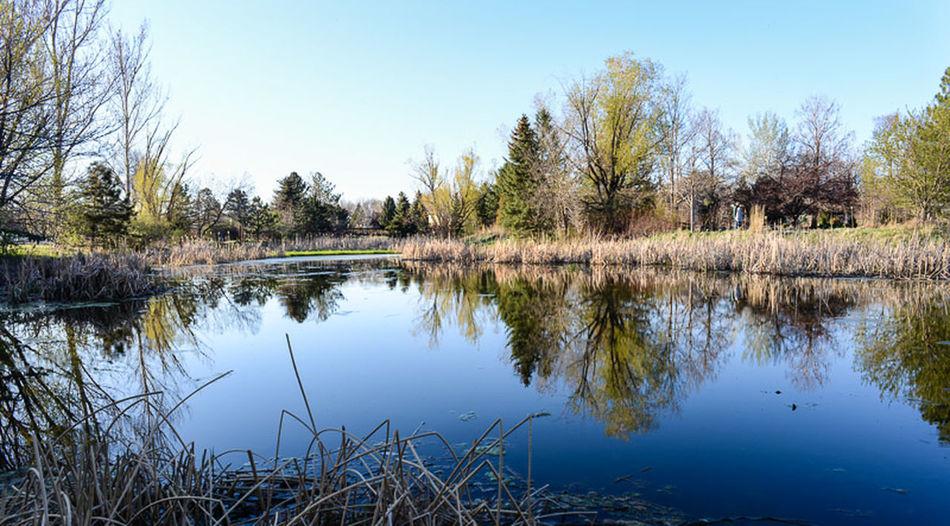 Taking Photos Enjoying Life Landscape Water And Sky