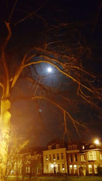 The Moonlight of Leiden Nightphotography Taking Photos Leiden_captured Enjoying Life Lizaratravelphotography Travel Photography
