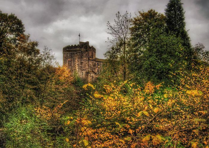Taking Photos Photography Skipton Malephotographerofthemonth TreePorn Nature On Your Doorstep Autumn Colors EyeEm Nature Lover Autumn Skipton Castle