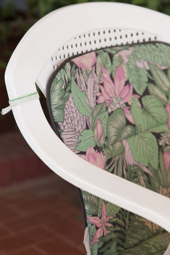 Blossom Botany Chair Close-up Floral Design Floral Pattern Flower Flower Head Fragility Freshness Growth Holiday In Bloom Outdoors Pattern Pattern, Texture, Shape And Form Petal Plant Seat Single Flower Springtime Surface Level