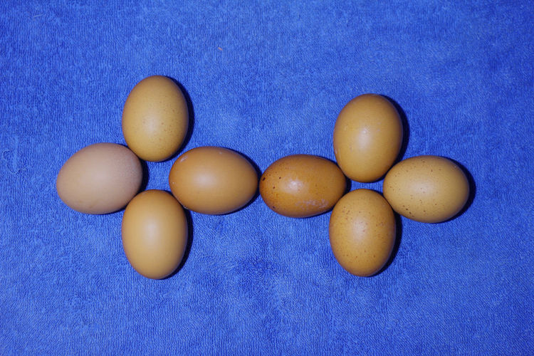 Close-up of eggs against blue background