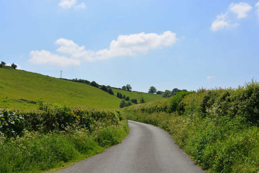 Country lane in summer through pasture fields Beauty In Nature Cloud - Sky Country Road Countryside Day Dorset Field Grass Green Color Growth Landscape Nature No People Outdoors Road Rural Landscape Rural Scene Scenics Sky Summer The Way Forward Tranquil Scene Tranquility Tree