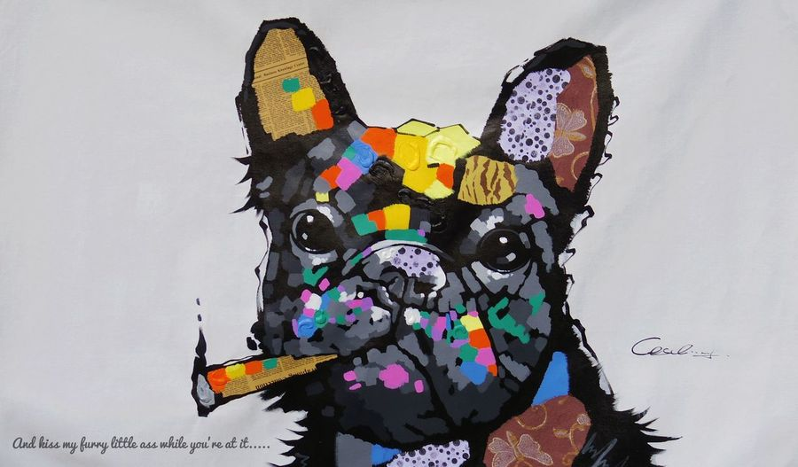 Oh, how I just love this picture and the little enhancement. Humor Art Installation PENTAX Q7 Photography Outdoors Art Display Painting Portrait Dog French Bulldog Colorful Representing Multi Colored