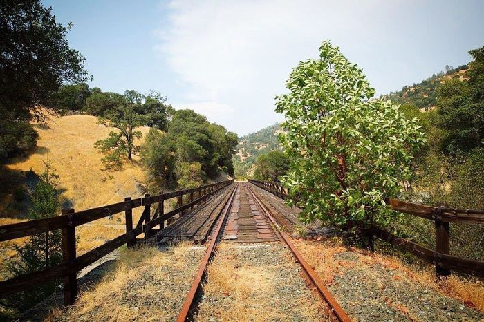 Lonely road Tree Railroad Track Railing Sky Rail Transportation Day No People Nature Growth Tranquil Scene Outdoors Landscape Nature Taking Over Scenics Beauty In Nature Footbridge Michellerobertsonphotography Ukiah Canon 5d Mark Lll Mishoobi California Life Californiaadventures Abandoned Places Abandoned Railroad Track
