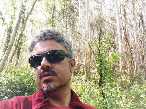 Sunglasses Portrait Looking At Camera Tree Front View Young Adult One Person Forest Outdoors Lifestyles Day Nature Close-up Adult People Adults Only
