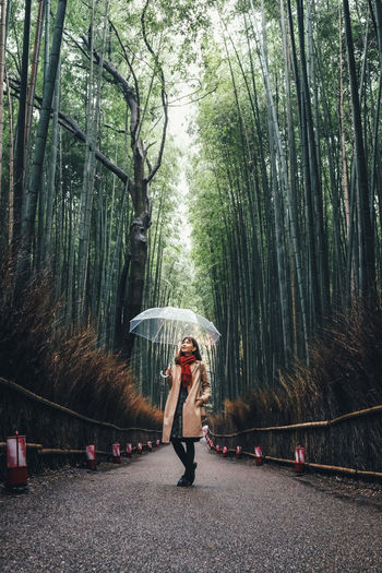 Woman standing amidst bamboo plants in forest