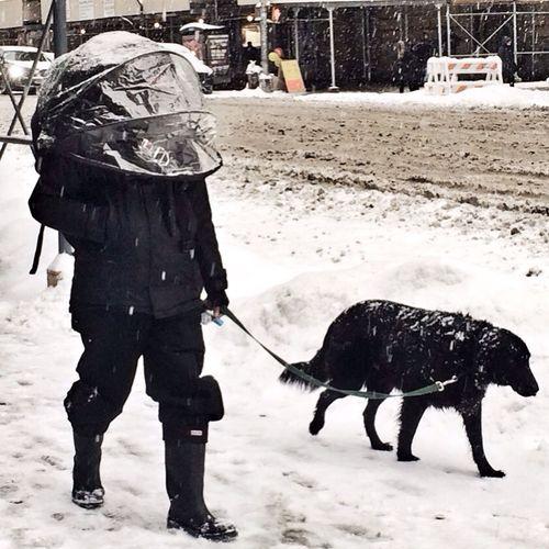 Snow Nobrella Overkill Streetphotography