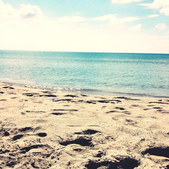 To the sea Mare Sea Summer ☀ Estate Taking Photos Sun Sole Beach