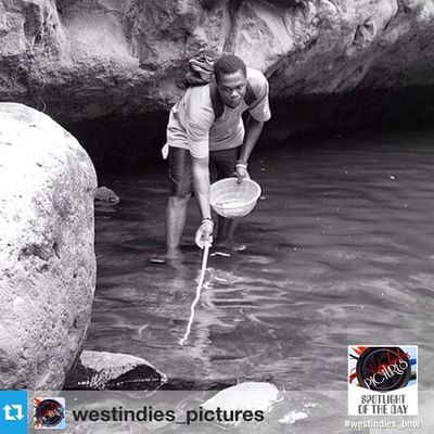 🌟🌟Thank you 🌟🌟 @westindies_pictures with @repostapp --- . JUNE, 16th 2014 ———————————————— 🔆 SP⊕TLIGHT ⊕F THE DAY 🔆 ———————————————— ✪ Photo by @duppy__kankera ✪ Localisation : Grenada ———————————————— Congratulations ! Your capture has been selected and featured as the westindies spotlight of the day ! Thank you so much for tagging and sharing your beautiful pics ! 👍✨ . . ✪ Follow @westindies_pictures . ✪ OFFICIAL TAGS : 📷 Westindies_pictures 👥 Westindies_people 🏁 Westindies_bnw 🏯 Westindies_architecture 🌆 Westindies_landscape 🌅 Westindies_sunset 🍀 Westindies_nature 🎨 Westindies_colors ———————————————— ✪ Substitute tag : WestIndies ———————————————— ☆ Westindies Pictures Team : @Mlle_Fwaiiz @Deedjii @Shayniz_l & @Auurelie_c_ ———————————————— WestIndies Caribbean Phototag_it Shotaward All_shotz Best_photogram Islandlife Loves_caribbean ———————————————— See yøu søøn før a new selectiøn ! ————————————————