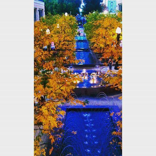 Las hojas de otoño haciéndose presente. Citycreek SaltLake Mall