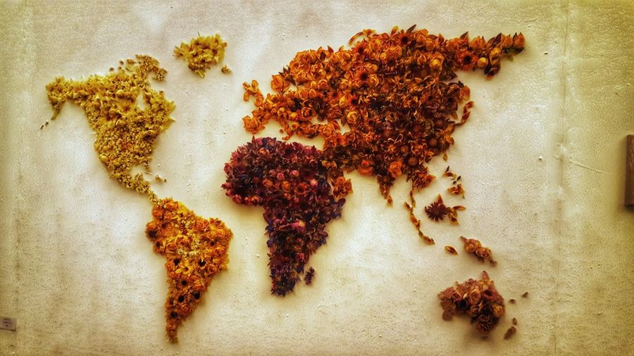 Flowers Dried Earth World Map Art Art Project No People Healthy Eating Close-up Indoors  Day