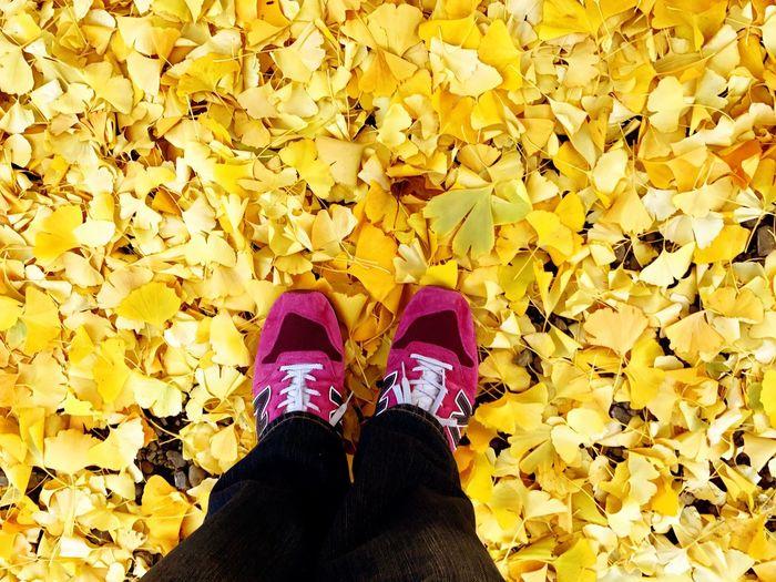 Feeling Autumn