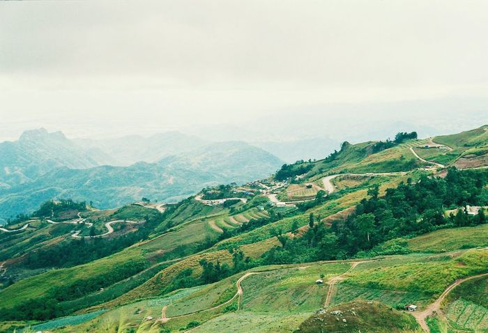 Mountain view. Landscape Mountain Nature Sky Outdoors Scenics Mountain Range Green Color Rural Scene No People Growth Tranquil Scene Beauty In Nature Backgrounds Agriculture Social Issues Tree NikonFM2 Nikon Nikonphotographer Film Analog Analog Camera Betterlandscapes Better Moment EyeEmNewHere