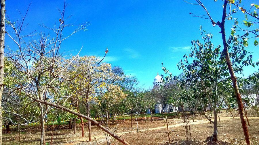 University Campus University Of Mysore Taking Photos Enjoying Life Hello World