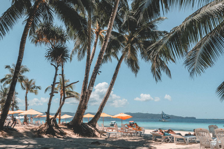 Beach Photography Boracay Island  Philippines Beach Beachphotography Beauty In Nature Boracay Group Of People Holiday Horizon Over Water Land Nature Outdoors Palm Tree Plant Real People Scenics - Nature Sea Sky Tree Tree Trunk Tropical Climate Trunk Vacations Water