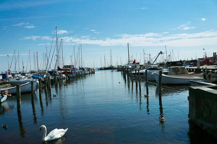 Water Nautical Vessel Transportation Mode Of Transportation Moored Sky Harbor Marina