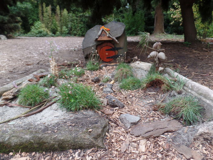 San Francisco Golden Gate Park Trunks Fairy House Fairy Door Trees Outdoors Relaxing Magical Check This Out Hidden Gems