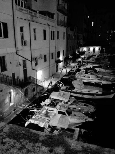 Enjoying Life Fossilivornesi Relaxing Livorno Italy Leghorn Nightphotography Night Night Lights Goodnight Sky Blue Sky Nightlife Relaxing Enjoying Life