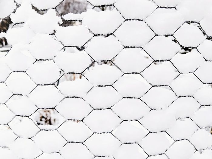 Chicken Wire Covered in Snow - A Wintertime Design Element Background Geometric Snow Winter Snow Covered Backdrop Wallpaper Chicken Wire Backgrounds Protection Pattern Safety Metal Close-up Wire Mesh Grid Hexagon Wire Boundary Geometric Shape Fence Netting Crisscross Barricade