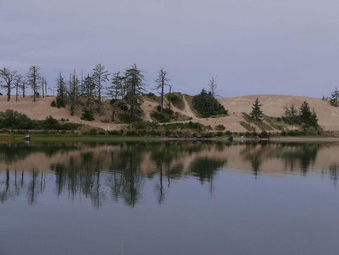 Oregon Dunes Beauty In Nature Lake Landscape Oregonexplored Reflection Scenics Standing Water Tranquil Scene Tree Waterfront