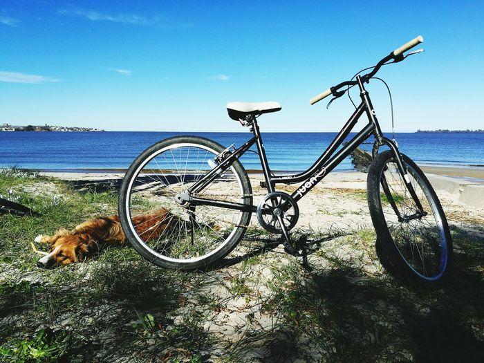 Bicycle Beach Sea Transportation Sky Stationary Day Outdoors No People Nature Water Sand Horizon Over Water Bikes Biking Bikeride Biketour Bike Life Biketrip Bike Riding