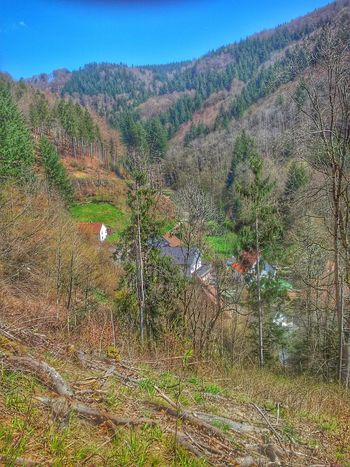 Glashütten bei Hasel. Siedlung Schwarzwald Black Forest Haseltal Hasel Landkreis Lörrach Deutschland Germany Nature_collection Forest Valley Tal