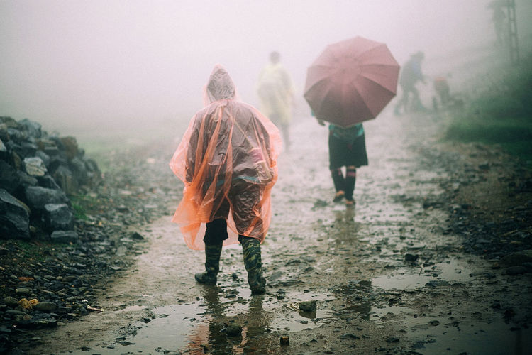 Rear view of people walking in rain