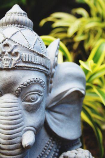 Statue Sculpture Close-up Spirituality Outdoors Plants Zen Zen Garden Zen-like Elephant Statue Elephant Trunk Zen Den