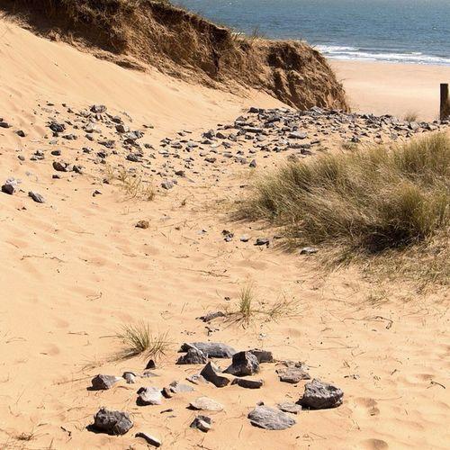 Beach Path Sea