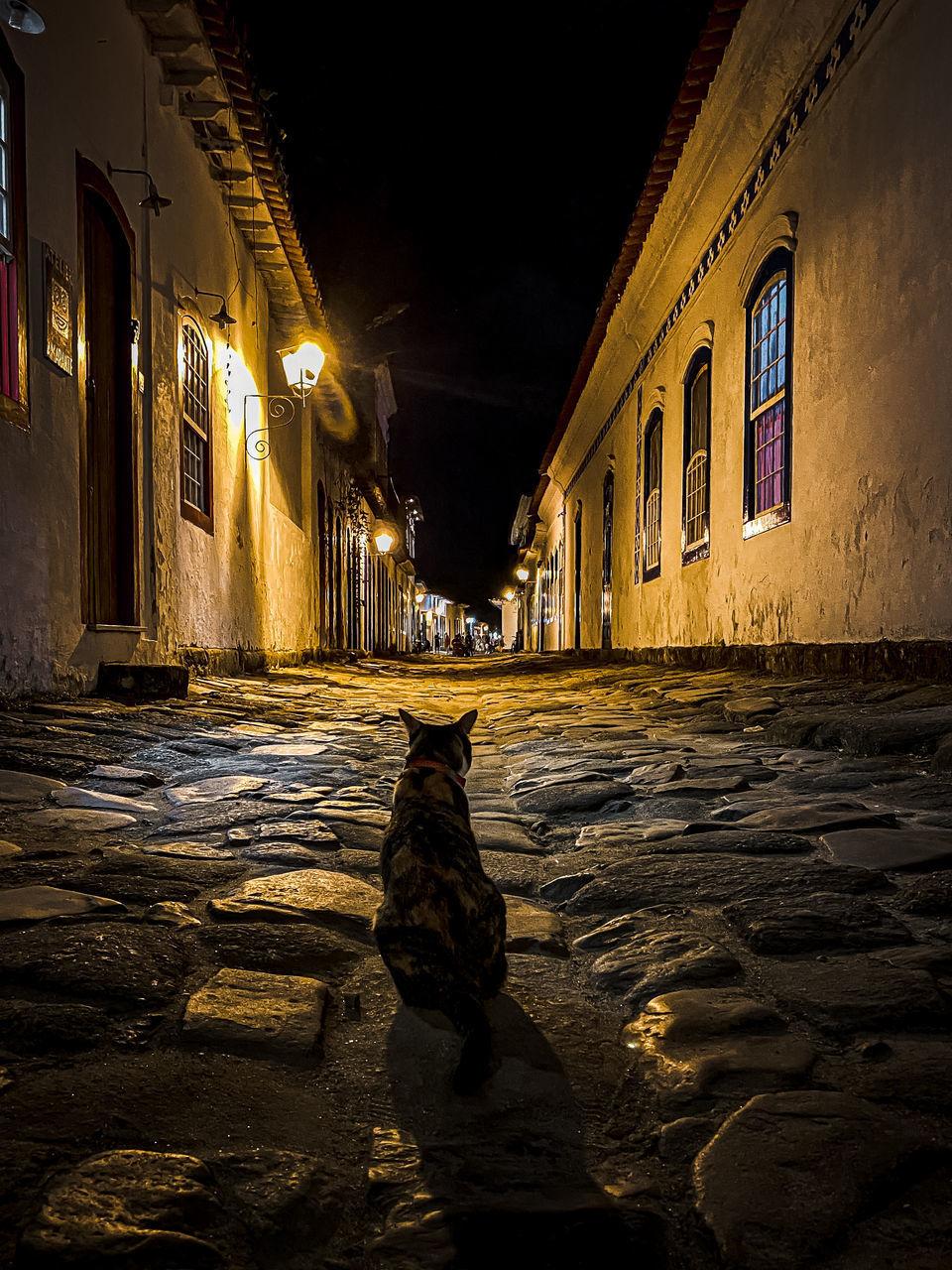 FOOTPATH BY STREET AGAINST BUILDINGS AT NIGHT