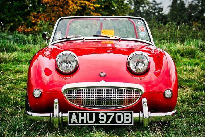 Austin Healey Grass Car Close-up Day Front View Grass No People Old-fashioned Outdoors Red Sprite Transportation